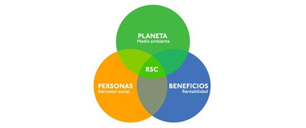 consultoria colaborativa realizedworth voluntariado y estrategia