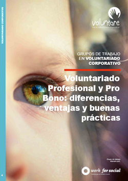 grupo-trabajo-voluntare-voluntariado-corporativo-profesional-pro-bono