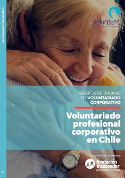 Grupo de Trabajo voluntariado profesional corporativo en Chile