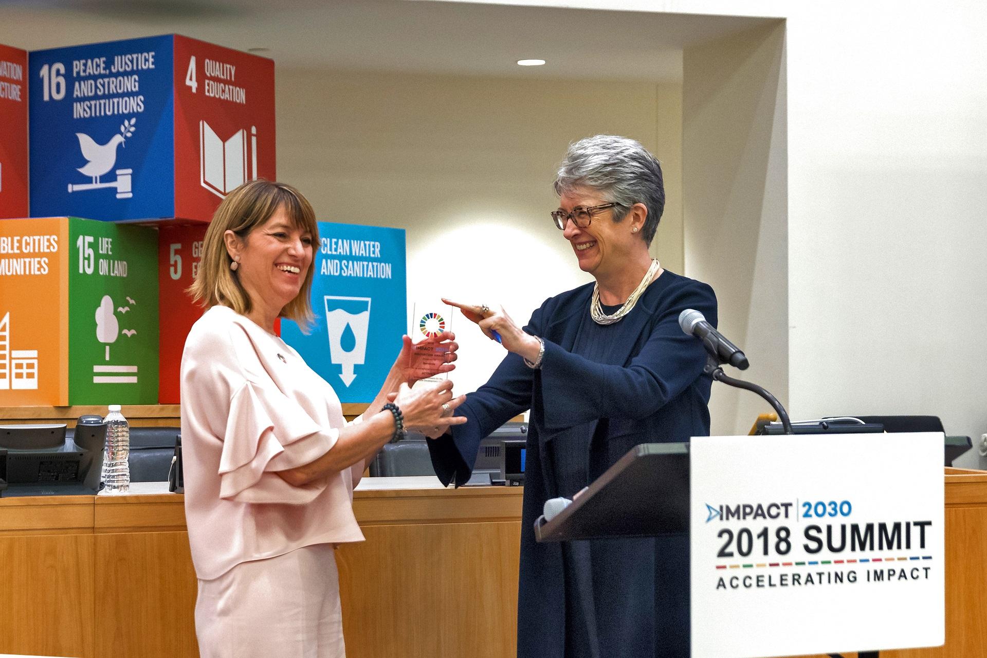 Voluntariado Iberdrola Innovation Award Impact2030