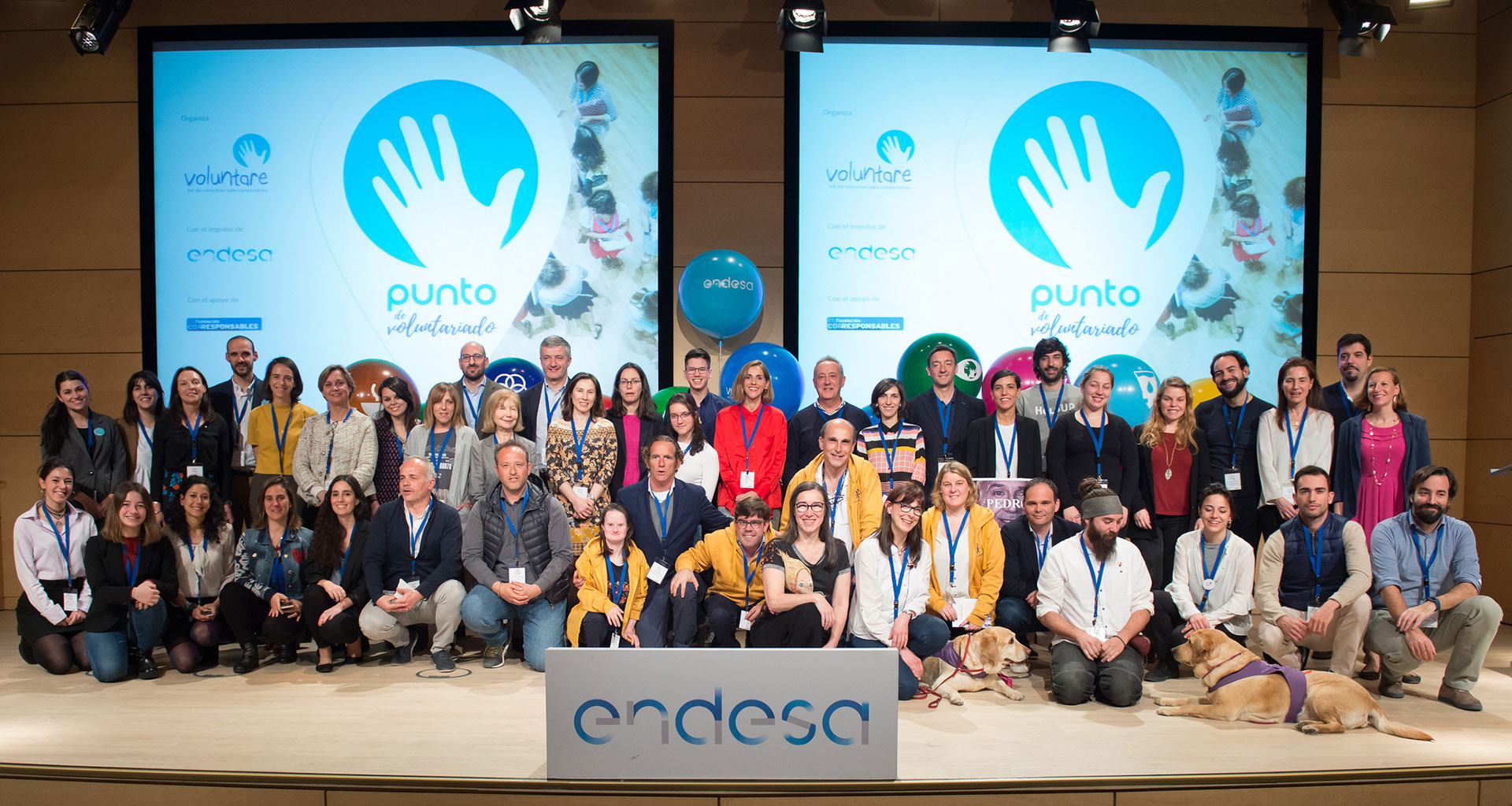 Punto_Voluntariado_Voluntare_Endesa_Corresponsables