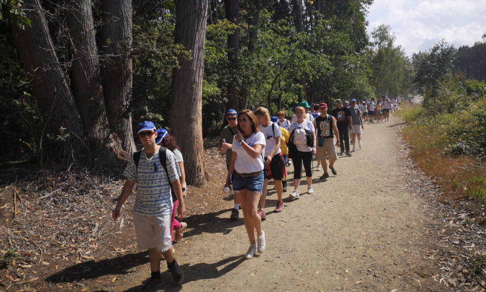 voluntarios axa camino santiago