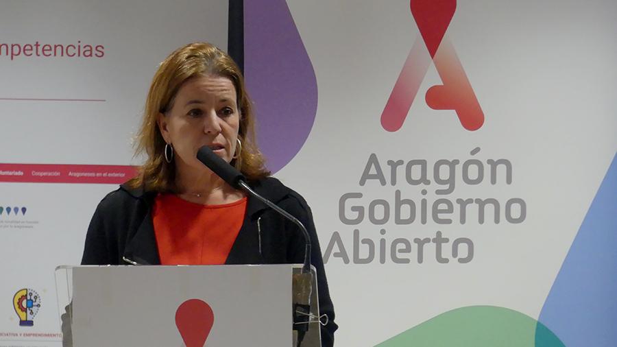 CVOL_competencias_voluntarios_curriculum_procesos_seleccion_empresas_aragonesas