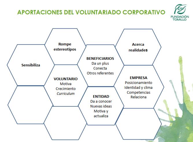 Tomillo diapositiva voluntariado